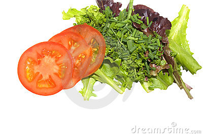 Gourmet salad isolated