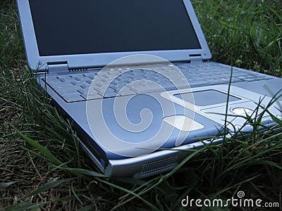 Gräsbärbar dator