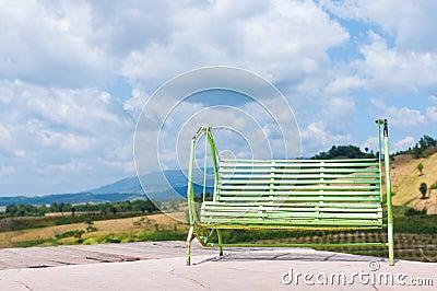 Grön swing