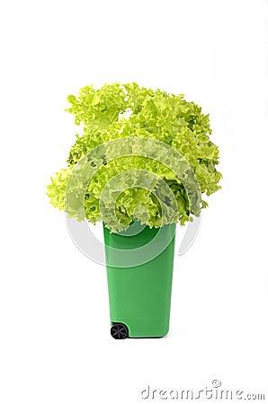Grönt plast- återanvänder slänga i soptunnan
