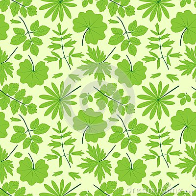 Grün lässt nahtloses Muster.