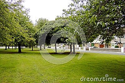 Grünes Vorstadtspacr