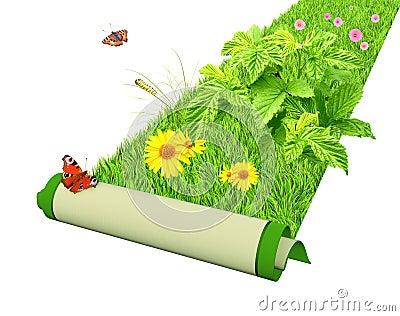 Går gräsplan