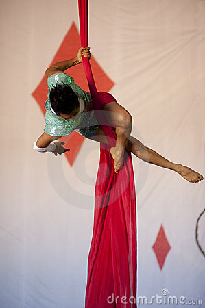 Graceful Acrobat