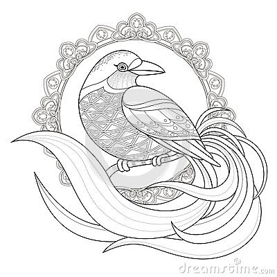 Graceful Bird Coloring Page Stock