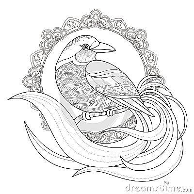 mandala coloring pages birds - photo#40