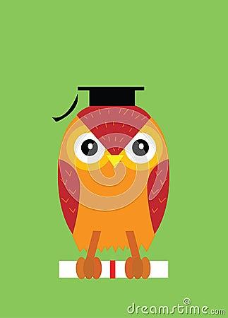 Graduation, owl
