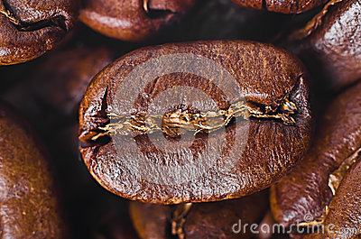 Grain of coffee by CU