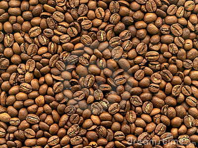 Grain coffee in macro
