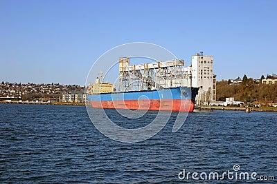 Grain cultivator and a ship