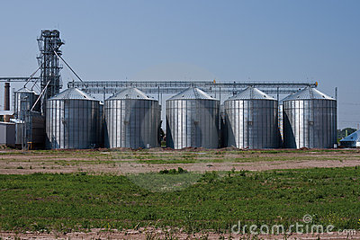 Grain drying systems