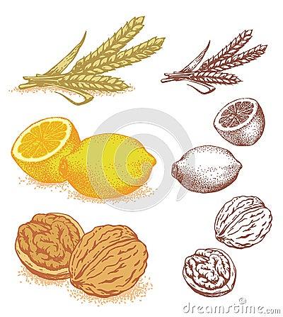 Grain, lemons, walnuts