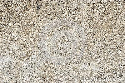 Grain limestone texture