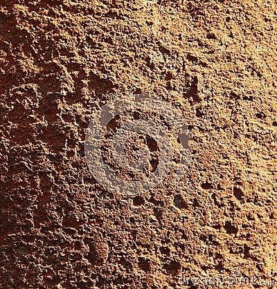 Grained limestone texture