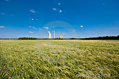 Grainfield and power plant