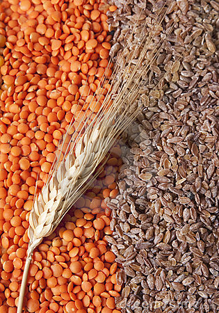 Free Grains Royalty Free Stock Image - 14065156