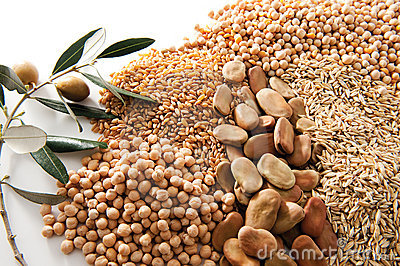 Grains and olive branch on white background