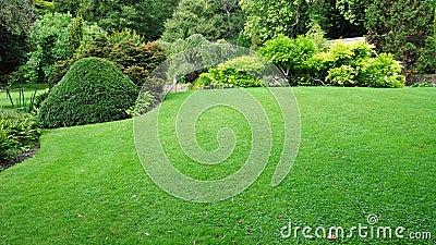 Gramado do jardim