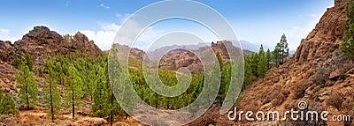 Gran Canaria Tejeda La culata mountains