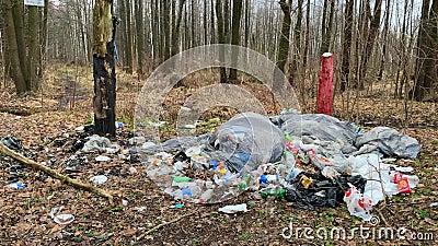 Gran cantidad de basura en el bosque Problema ecológico de la contaminación ambiental almacen de video