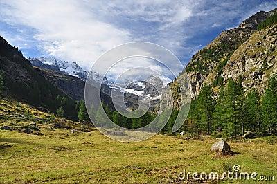 Gran Paradiso national park. Aosta Valley, Italy