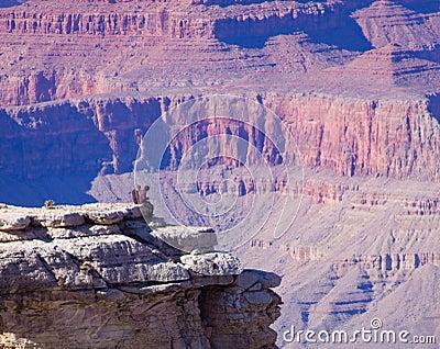 Grand Canyon Arizona tourists