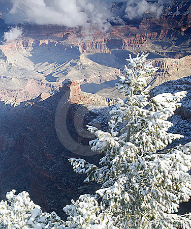 Free Grand Canyon Contrasts Royalty Free Stock Image - 4622856