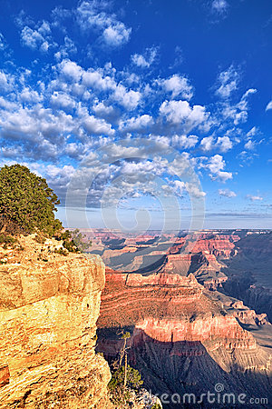 Free Grand Canyon In The Morning Royalty Free Stock Image - 28281226