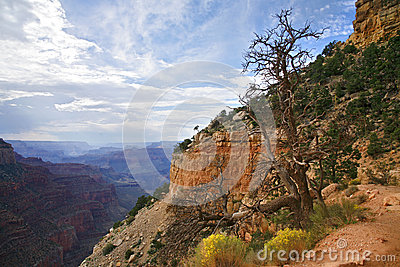 Grand Canyon National Park, Arizona USA