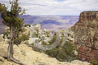 Grand Canyon Scenic South Rim