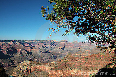 Grand Canyon - View from the south rim