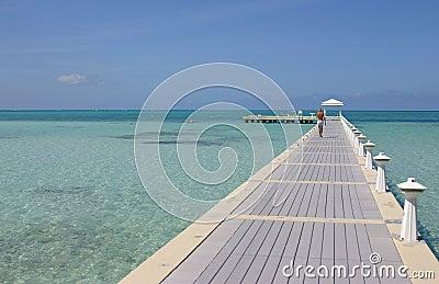 Grand Cayman Island Boardwalk