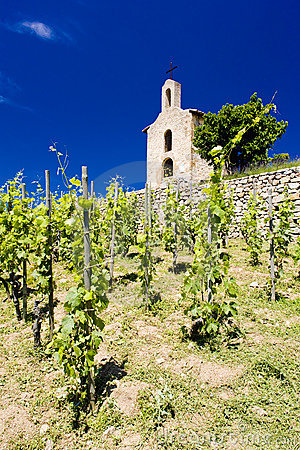 Grand cru vineyards