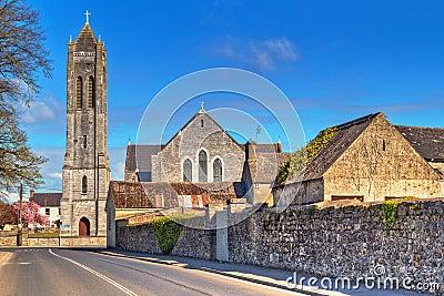Grand dos avec l église dans la ville de Portumna