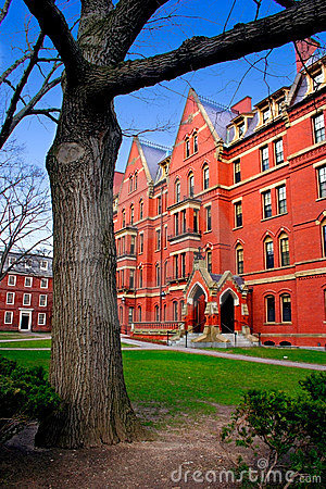 Grand dos de Harvard, Etats-Unis