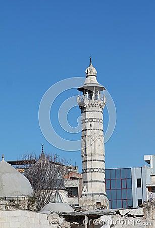 The Grand Mosque in Adana, Turkey.