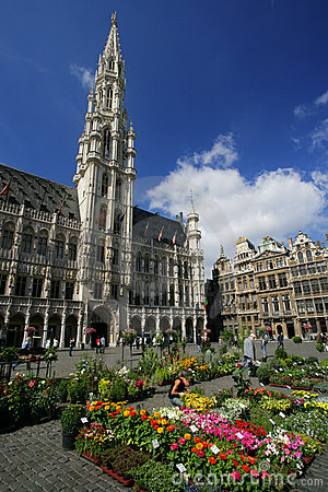 Free Grand Place, Brussels Royalty Free Stock Image - 874316