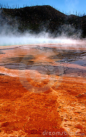Free Grand Prismatic Hot Spring Mud Flats Royalty Free Stock Photos - 243178