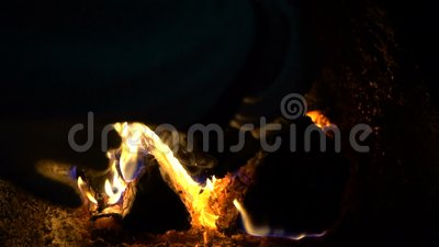Grande br?lure de firewoods de bouleau dans la chaudi?re clips vidéos