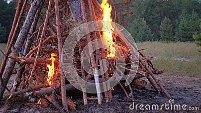 Grande Fogo das Ramificações Queimam em Dusk no Grande Fogo da Floresta Queimando Brilhante filme