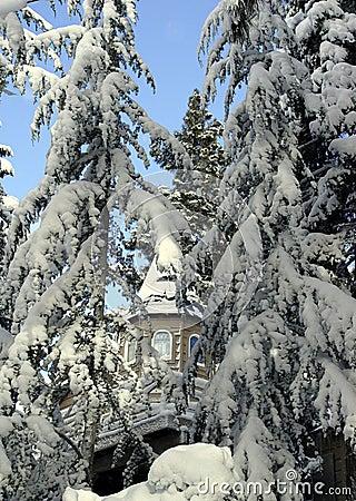 Grande maison dans les bois de neige