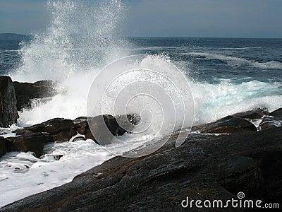 Grande spruzzata dell onda