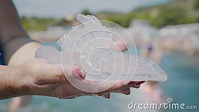 Grandes medusas en las manos contra el mar almacen de video