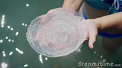 Grandes medusas en las manos contra el mar metrajes