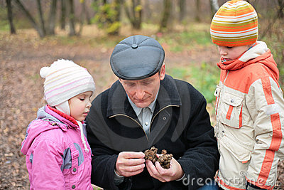 Grandfather with grandsons in wood