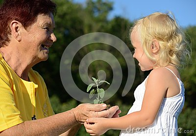 Grandmother and granddaughter holding a plant together