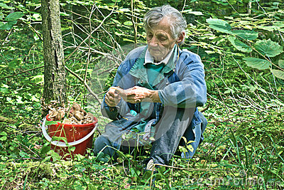 Grandmother with mushrooms