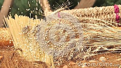 Grani del grano che cadono giù sui prodotti della farina Chiuda su, movimento lento video d archivio