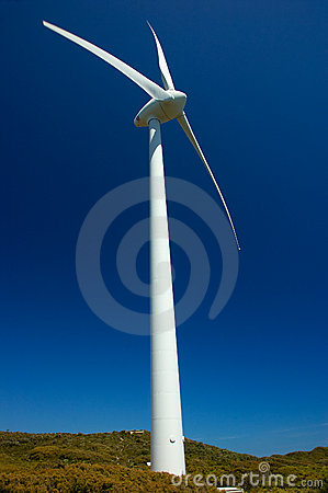 Granja de viento, Albany