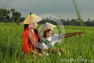 Granjero asiático en el campo del arroz